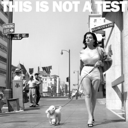 THIS IS NOT A TEST Podcast - Trying to describe my job, also, TMZ and celebrity tabloid trash culture